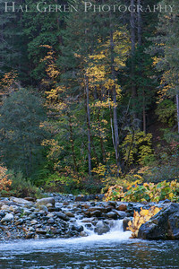 Yuba River  Northern California 0910G-YS2