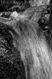 Uvas Canyon Morgan Hill, CA 1904U-W11BW1