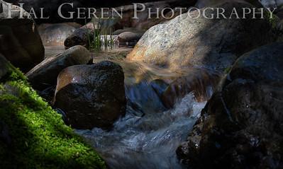 Uvas Canyon Morgan Hill, CA 1904U-S3