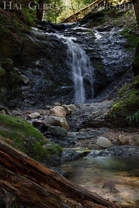 Uvas Canyon County Park 1203U-F1