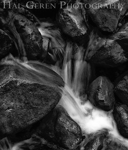 Uvas Canyon County Park 1203U-S14BW1