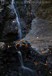 Basin Falls Uvas Canyon Morgan Hill, California 1110U-BF1