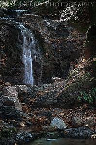 Uvas Canyon Morgan Hill, California 1110U-FH1E2