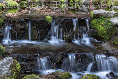Spring Yosemite, California 1204Y-Sp2