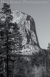 El Capitan Yosemite, California 1204Y-ECBW1