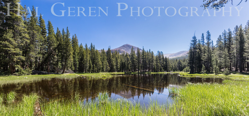 Vernal Pond<br /> Yosemite, California<br /> 1607Y-L1