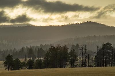 White Mountains Storm