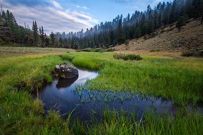 Boneyard Creek, White Mountains