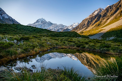 Small alpine Tarn in the Hooker Valley reflecting Aoraki Mount Cook