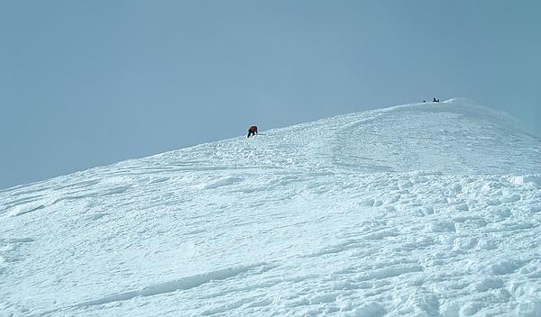 Summiting Piz Palù, Switzerland