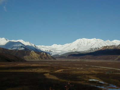 Gulkana Glacier.