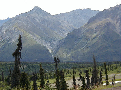 A side ravine off the South Fork of the Matanuska River, viewed from Mile 116 on the Glenn Hwy.