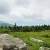 Grassy Ridge Panorama