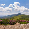 Roan Mountain Highlands