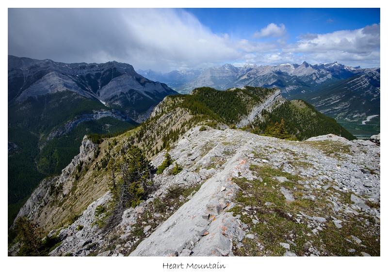 Heart Mountain