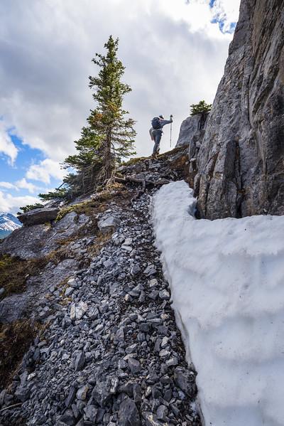 Ledges along the cliffs