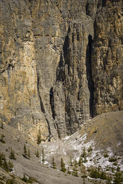 Large landscapes