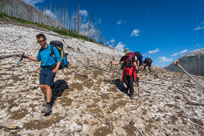 There was still a mass of snow over the creek at the base of an avalanche gully. It made for an easy traverse.. sadly it was short lived.