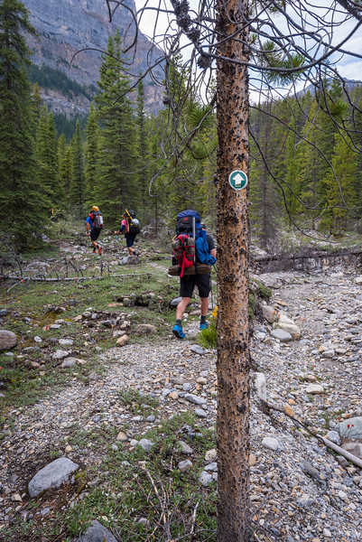 Trail has lots of flagging and markers in the trees.. if it's daylight and you get lost, then perhaps this isn't the sport for you.