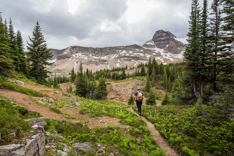 Following the trail through the alpine forest.. Isolated peak on the right.