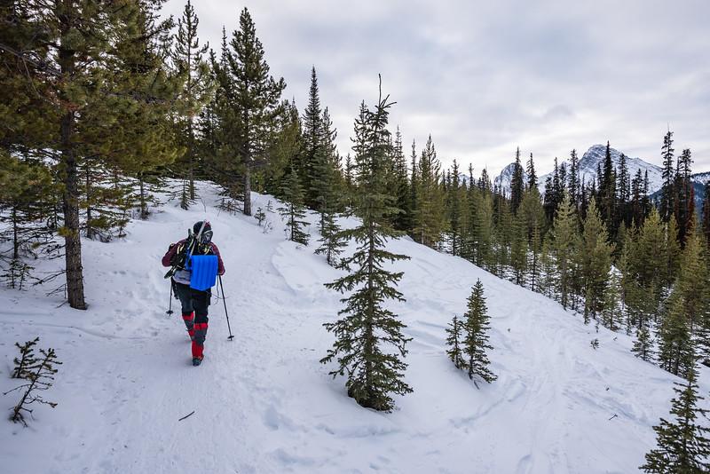 Jamie walking along the Highrockies trail.