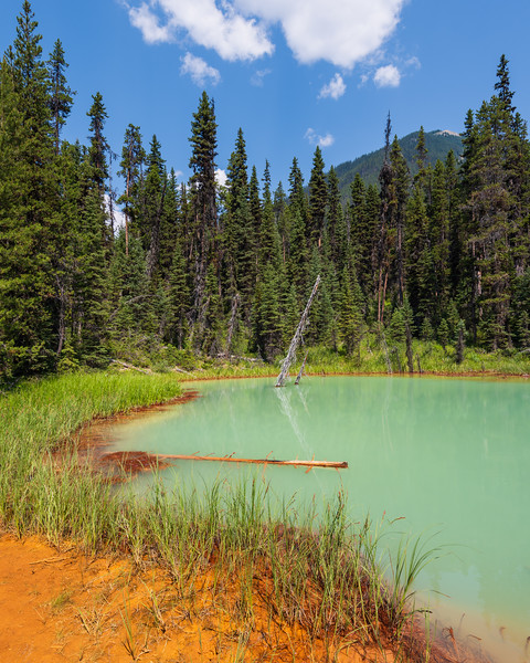 Colours of the paintpots. Ochre dirt and green water.