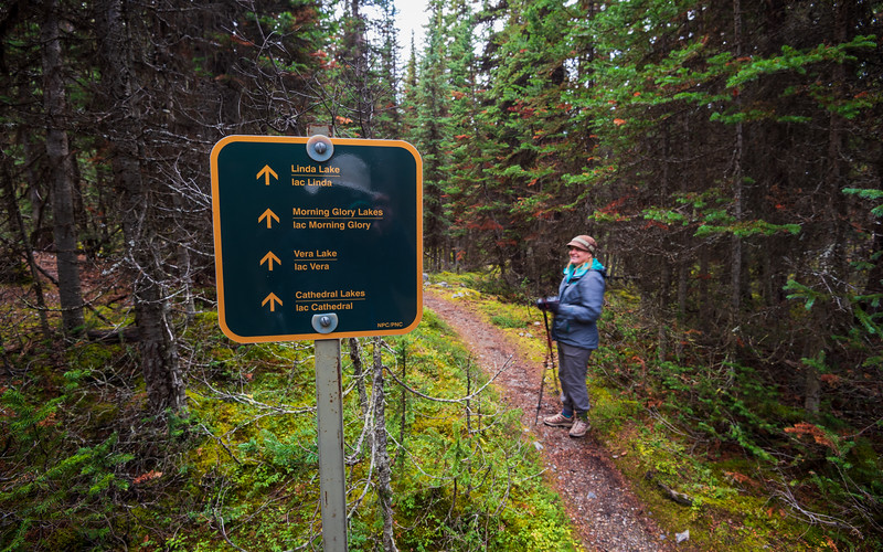 I thought a hike to Morning Glory lakes would be a nice leg-strecher given our late arrival.