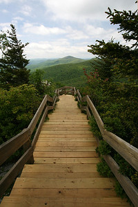 Rough Ridge boardwalk
