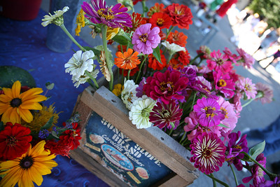 farmers mkt flowers (3)
