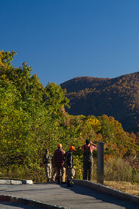 The colors of fall. Hunters looking for their bear dog.