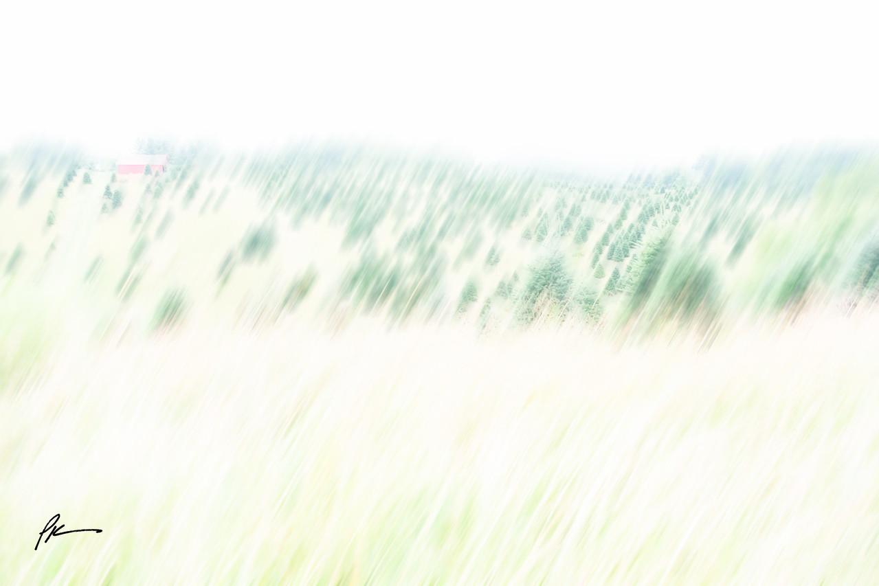 8121-HDR-Edit