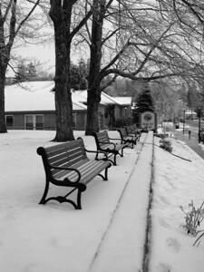Benches in winter BW