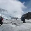 Lower Glacier Marconi