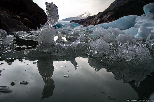Ice Sculpture Garden