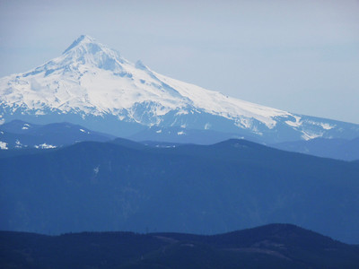 Mt. Hood from the summit of Silver Star mountain