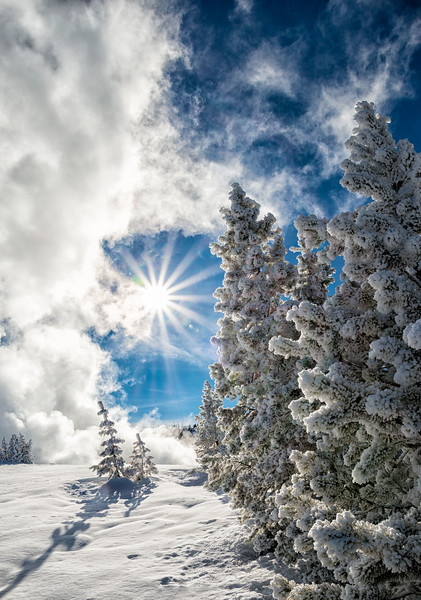 Sun, Snow and Steam