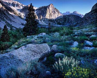 Big Pine Canyon, E. Sierra