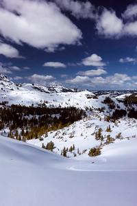 Spring around Carson Pass