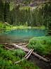 Wilderness Pond