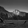 Half Dome Black and White