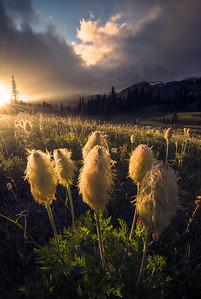 Mt Rainier hiding behind clouds during sunset - Washington
