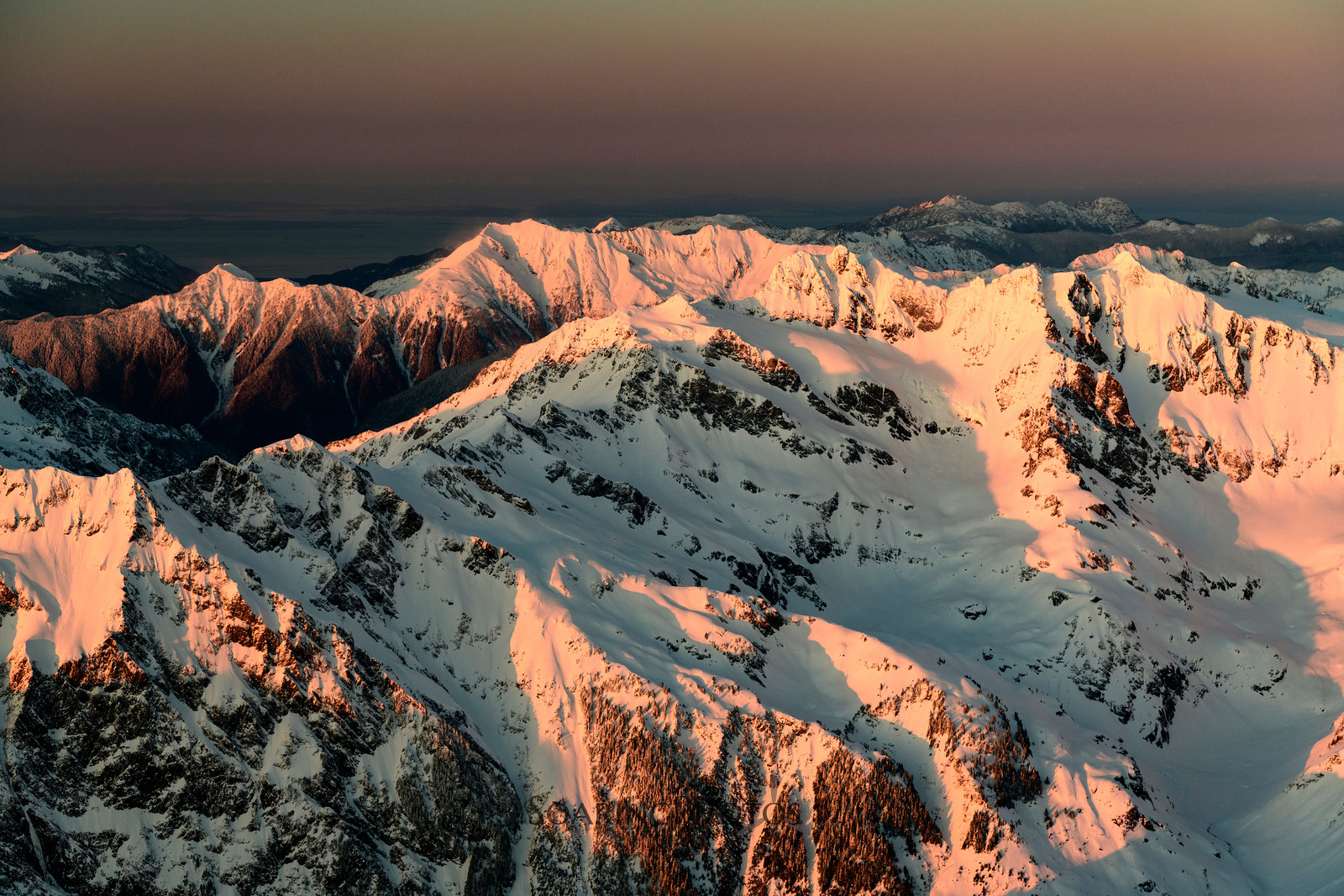 Olympic Alpenglow