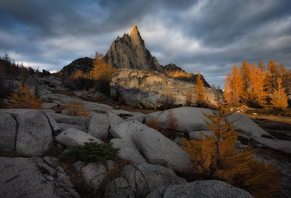 Granite and Larch trees are a wonderful combination