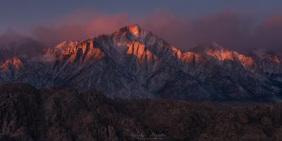 Lone Pine dawn