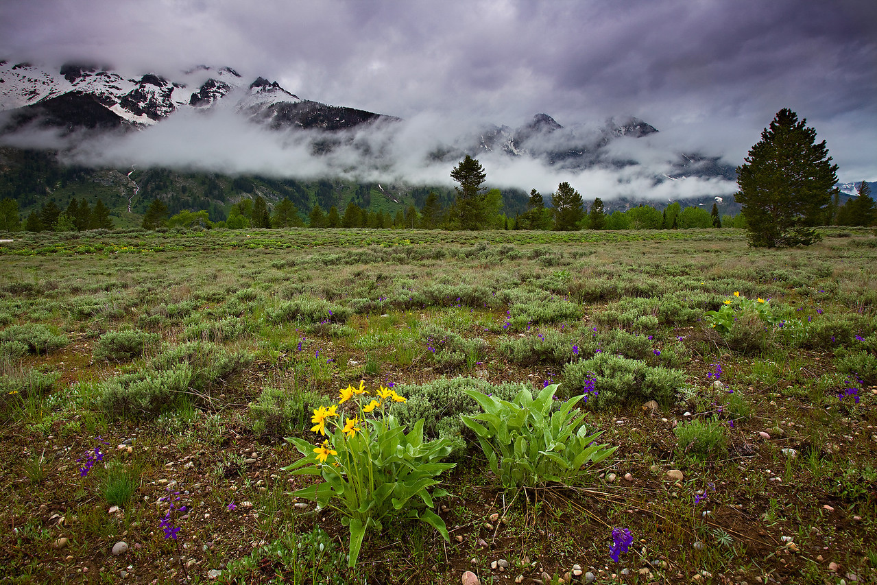 Cloudy Tetons - An early morning storm blows ever the Grand Tetons