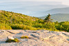 Cadillac Mountain Morning Glory