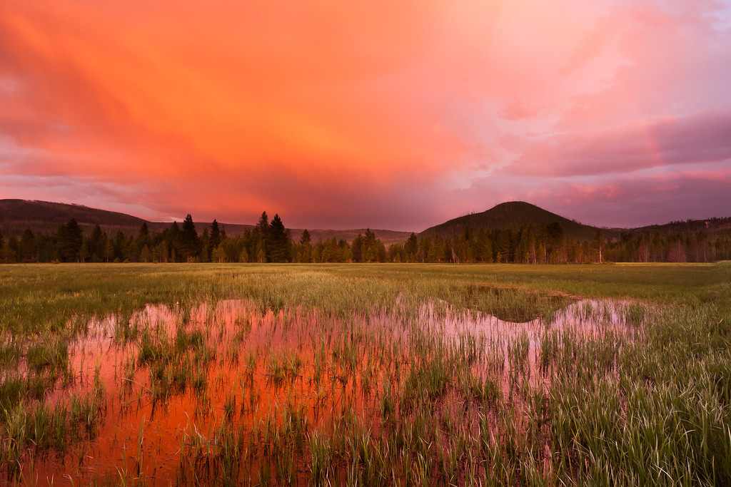 At the Close of the Day - Varina Patel Yellowstone National Park - Wyoming, USA