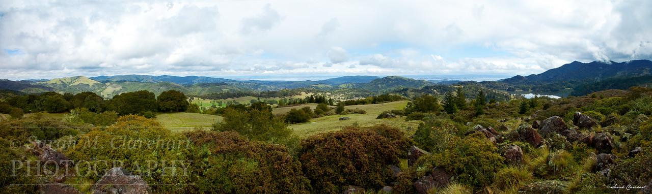 Azalea Hill Panorama