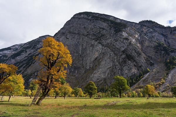 Große Ahornboden / Eng, Österreich