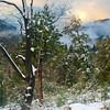 Clearing Storm, San Jacinto Mountains